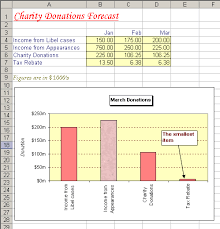 excel 2010 exercise 2007 charity donations formatting mainly