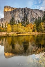 fall color explained eloquent nature gary hart