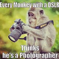 Photographer Meme - every monkey with a dslr thinks he s a photographer justpost