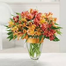 florist ocala fl florist ocala fl 34474 leci s bouquet