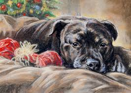 staffordshire bull terrier greetings cards in dog greetings cards