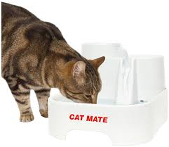 pet mate cat dog water bowl drinking fountain spare cartridge pump