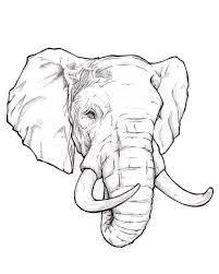 What Do Elephant Tattoos Best 25 Elephant Ideas On Elephant