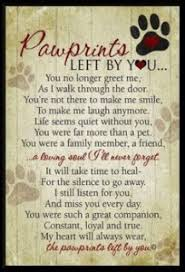grieving the loss of a pet grieving the loss of your beloved pet family pet memorial