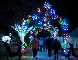 holiday lights tour detroit wild lights at the detroit zoo this holiday season wxyz com