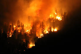 Wild Fire Cle Elum Wa by Thinning Forests Aims To Reduce Fire Risk In Washington Q13 Fox News