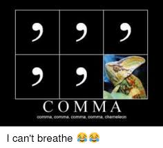Comma Meme - 25 best memes about comma comma chameleon comma comma
