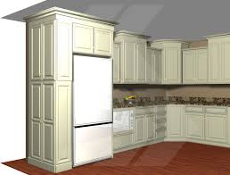 Cabinet 12 Deep Build In Your Refrigerator With A 12 U201d Deep Pantry Adjacent To