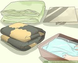 Why Do Bed Bugs Come Out At Night 4 Easy Ways To Get Rid Of Bed Bugs Organically Wikihow