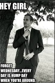 Wednesday Hump Day Meme - hey girl forget wednesday every day is hump day when you re