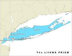 Staten Island Map Nyis