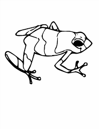 frog color sheet newcoloring123