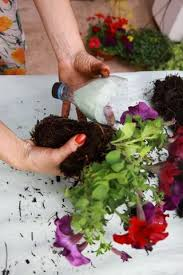 Diy Plastic Bottle Vase Fun Plastic Bottle Recycling Vertical Garden Or Vases For Succulents