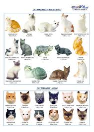 names of cat breeds cats types cute cat breed name tridanim