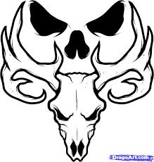 7 how to draw a deer skull deer skull