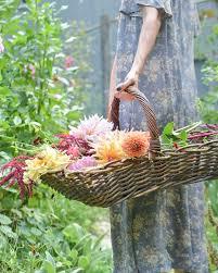 2100 best flower maiden fantasy images on pinterest female