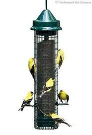 The Backyard Bird Company - the backyard bird company backyardbird on pinterest