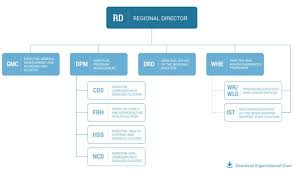 Organizational Organizational Structure Who Regional Office For Africa