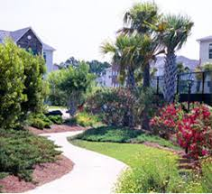 Creative Landscape Design by Beautiful Landscaping For The Myrtle Beach And Murrells Inlet Area