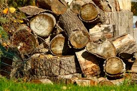 rancher logging home logging cutting logs for burning at home kitchen u0026 kitchen