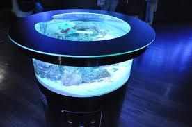 japanese aquarium aquariums made attractive through the power of technology hi tech