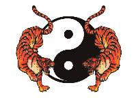 yin yang tigers tattooforaweek temporary tattoos largest