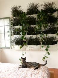 herb garden indoor gardening wall planter system