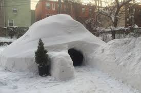 igloo airbnb removes new york igloo charging 200 a night the verge