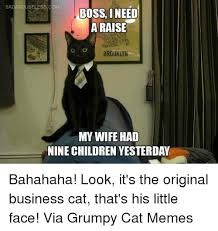 Business Cat Memes - 25 best memes about original business cat original business