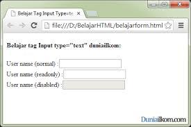 membuat form input menggunakan html fungsi dan cara penggunaan tag input type text dan type password