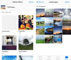Photo Album That Holds 500 Pictures How To Use Iphone Photo Albums To Organize Photos