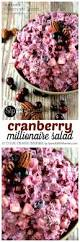 cranberry jello salad recipes thanksgiving cranberry millionaire salad spend with pennies