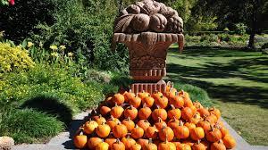 fall pumpkin wallpapers pumpkins tag wallpapers pumkin farms autumn attractions dreams