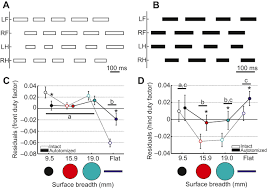 tail loss and narrow surfaces decrease locomotor stability in the