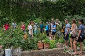Urban Gardening Philadelphia - warrington community garden philadelphia pennsylvania urban