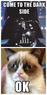 Grumpy Cat Meme Generator - funny star wars cat memes funny pics story