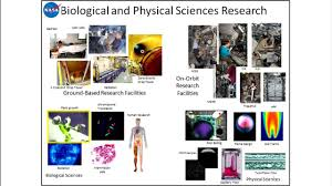 life and physical sciences research at nasa national academies of