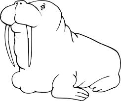 Coloriage Morse dessin à imprimer sur COLORIAGES info