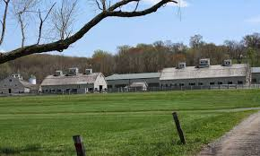 caves farm llc equestrian facility in baltimore county md