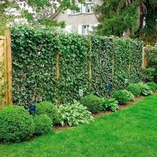 image of yard fence ideas coverfence cover up chain link