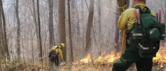 David Phillips Wildfire Credit Union by North Carolina Forest Service