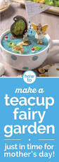 how to make a fairy garden in a teacup coupons com