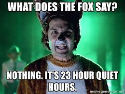 What Did The Fox Say Meme - what does the fox say nothing it s 23 hour quiet hours what