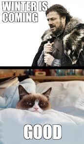 Winter Is Coming Meme - winter is coming good weknowmemes generator