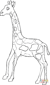 giraffe 20 coloring page free printable coloring pages
