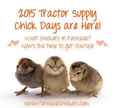 tractor supply gun safe black friday lauramikulski ferndale chickens