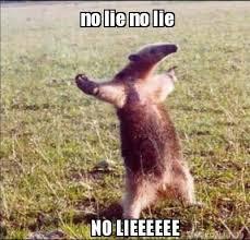 No Lie Meme - meme creator no lie no lie no lieeeeee meme generator at