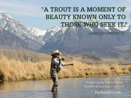 Fly Fishing Meme - a trout is a moment of beauty known only to those who seek it
