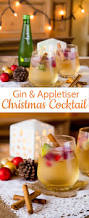 gin u0026 appletiser a refreshing christmas cocktail recipe apple