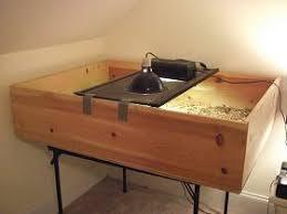 how to build a tortoise table my tortoise table i built tortoise housing pinterest tortoise